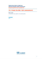 Cross-border risk assessment