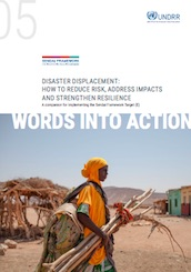 Words into Action guidelines - Disaster displacement: How to reduce risk, address impacts and strengthen resilience