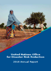 United Nations Office for Disaster Risk Reduction: 2018 annual report