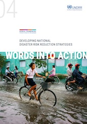 Words into Action guideline: Developing national disaster risk reduction strategies