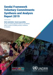 Sendai Framework voluntary commitments: Synthesis and analysis report